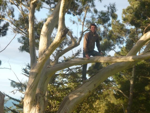 En un parque por Sumner Bay