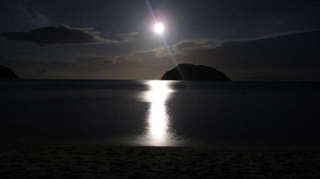 Aunque no lo parezca, eso es La Luna iluminando la llegada de mi año nuevo.